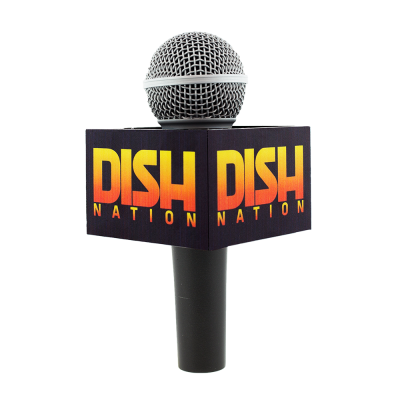 DISH NATION MIC FLAG